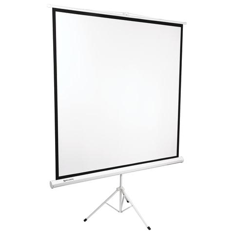 Экран проекционный BRAUBERG TRIPOD, матовый, на треноге, 180х180 см, 1:1